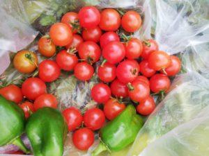 自然栽培、自然農法